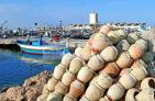 zarzis;mer;barque;bateau;port;peche;pecheur;industrie;
