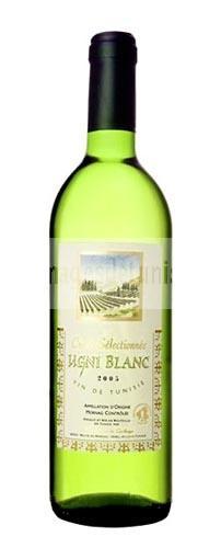 vin blanc ugni