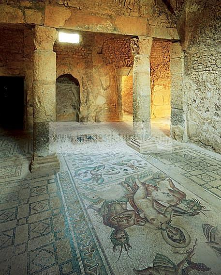architecture;antique;antiquite;romain;villa;mosaique;amphitrite;