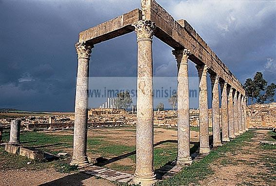 antiquite;romain;thuburbo majus;palestre