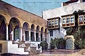 Tunis et environ 1900