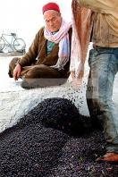 mellita;jerba;ile;djerba;tradition;agriculture;huile;huilerie;olive;