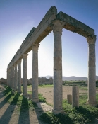 antiquite;romain;thuburbo-majus;palestre
