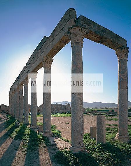 antiquite;romain;thuburbo;majus;palestre;