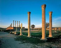 antiquite;romain;thuburbo-majus;forum;temple