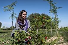 Sarah Toumi, Dream in Tunisia